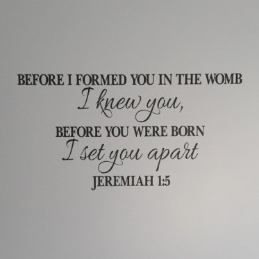 JER1V5-0001-Before-I-formed-you-in-the-womb-I-knew-you-before-you-were-born-I-set-you-apart-AP2